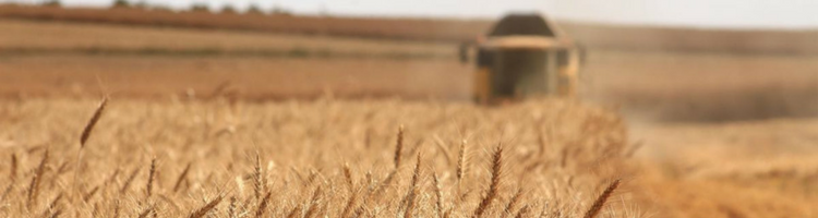 The new Canadian Agricultural Partnership: Dancing to the same old