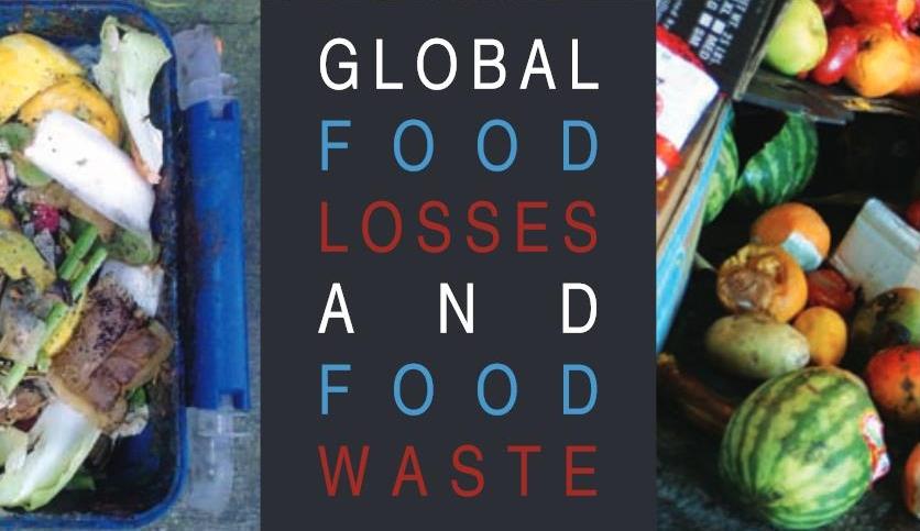 Healthy Food Action Webinars
